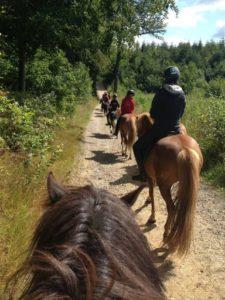 På tur i Langesøskoven
